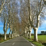Road out of St. Remy